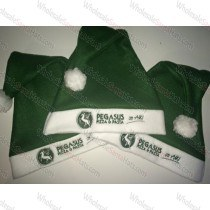 USA Bulk Green Santa Hat